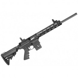 Carabina semiautomática Smith & Wesson M&P15-22 Sport PC